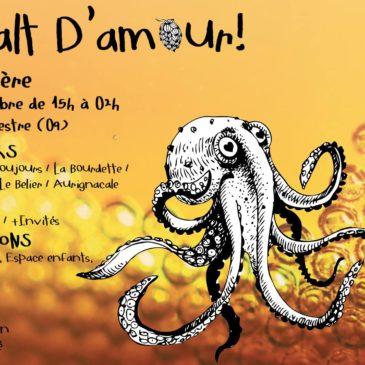 En Malt d'Amour ! Fête de la bière à Ste Croix Volvestre (09) – Samedi 3 nov