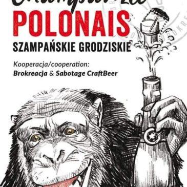 Les invités du mois de novembre 2019 : collab Sabotage/Brokreacja !